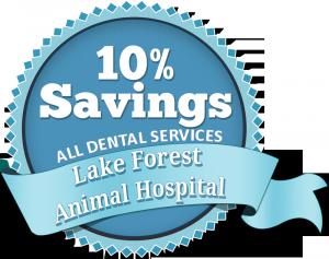 Lake Forest Animal Hospital