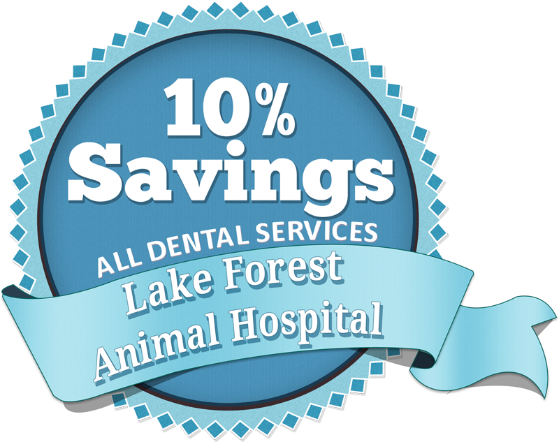 Lake Forest Animal Hospital